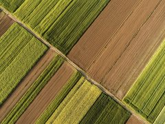 物联网应用如何实现农业的数字化转型?